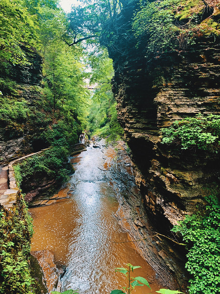New York Gorges