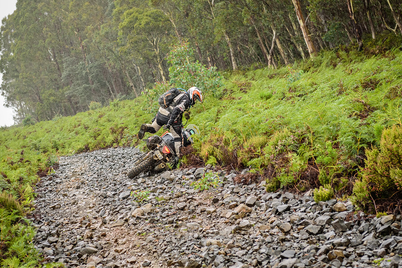 2019 KTM Australia Adventure Rallye (434).jpg