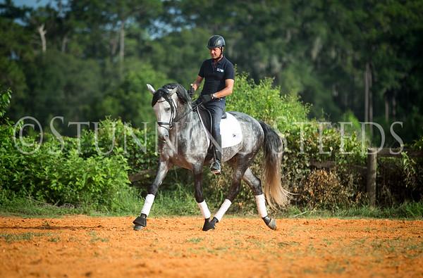 AlBachin Manyou Saddle