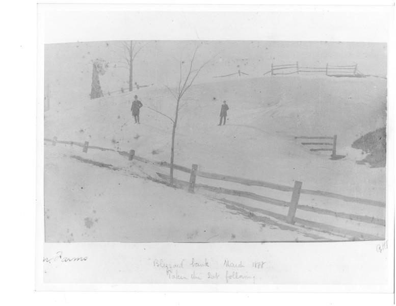 blizzard 1888 CF 17 8.jpg