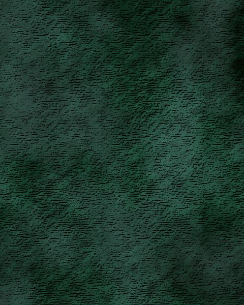 Scanner Green.jpg