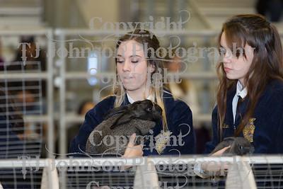 2018 KISD Breeding Rabbits