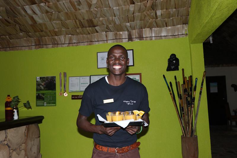 Africa Bwindi Mahogany Springs