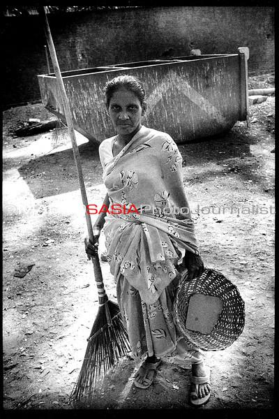 india193.jpg