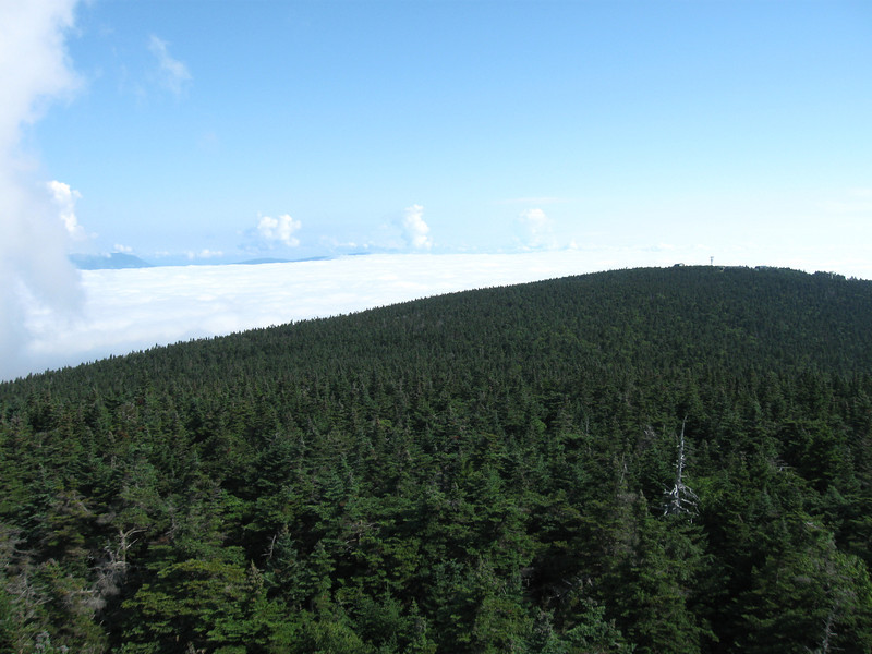 A sea of clouds nestled along Stratton Mountain