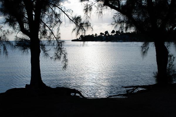 3-Cayman Wendy's Photos