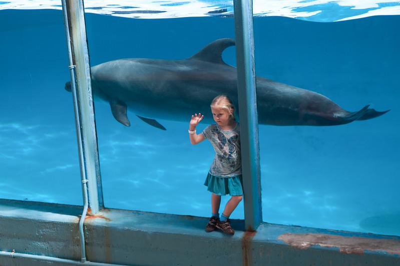 Hawaii-2010-062.jpg
