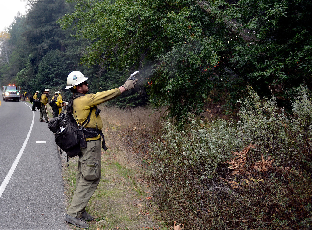. Los Padres National Forest firefighter Brian Hughes shoots a flare into the trees while lighting a back fire along Highway 1 between Pfeiffer Ridge Road and the Big Sur Station in Big Sur, Calif. on Wednesday, December 18, 2013. (Photo David Royal/ Monterey County Herald)