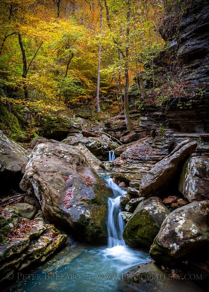 Fall Cascades