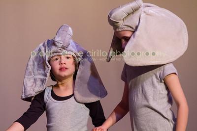 Friday Elephants
