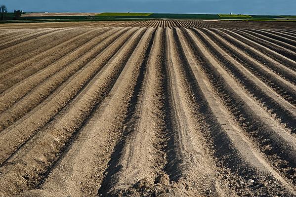 Lignes de terre