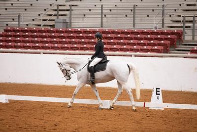 Horse 109