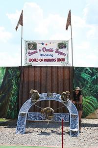 World-Of-Primates-Photos