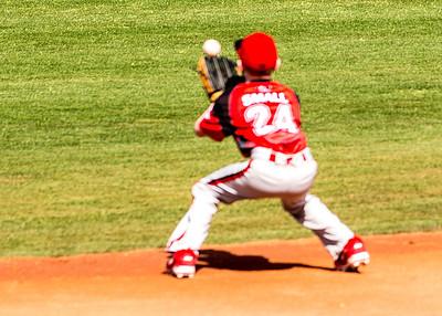 Renegades Baseball in Phoenix