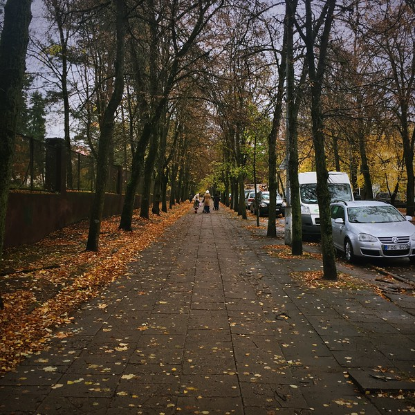 This was my walk to get to Old Town Vilnius. Always lots of people walking along. Vilnius, Lithuania. November 2017.