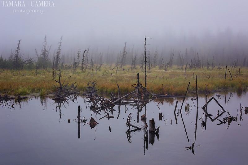 Eagle River6-3-2.jpg
