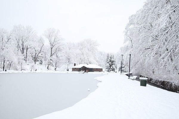 2019 Snow day Cardinal verona park