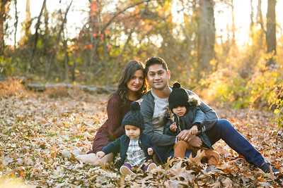 Gupta Family Fall 2016