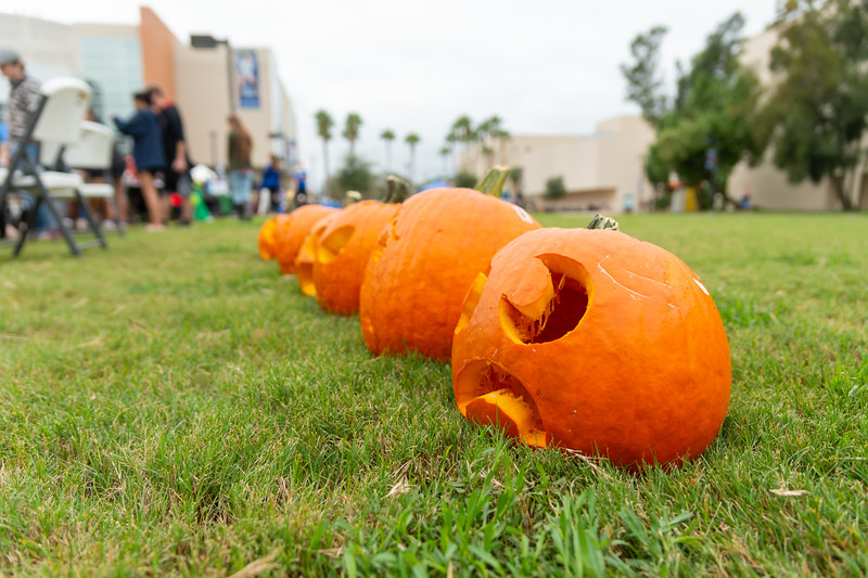 Carved out pumpkins lined up to be judged for the best one at the 2018 Fall Festival.