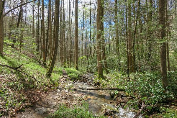 Cantrell Creek Trail (#148)