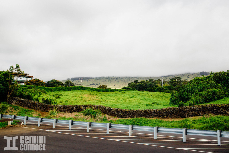 Maui Hawaii copy.jpg