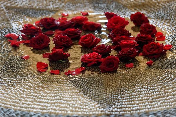 Birthday of Abbi Rose, casa Aramara