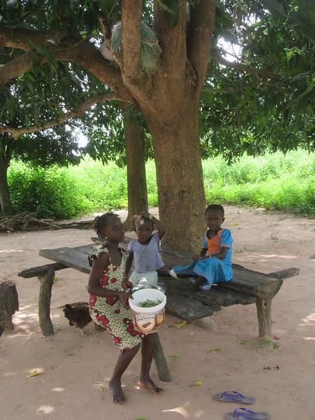 029_Casamance. Maison typique (en banco). 21 de 21. Les Enfants jouant à l'extérieur et la Plate-forme pour se reposer (sous l'arbre).JPG