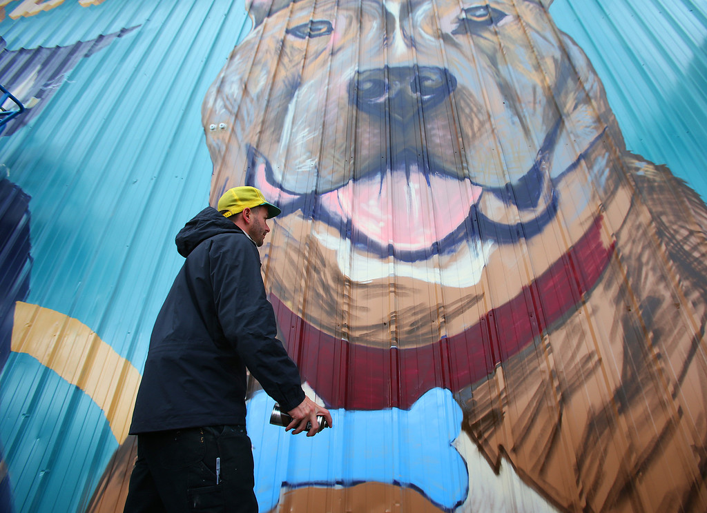 . Artist Josh Powell works on a mural at the Hayward Animal Shelter on Thursday, Feb. 7, 2013 in Hayward, Calif.  Powell has worked on several mural projects in the city of Hayward.  (Aric Crabb/Staff)