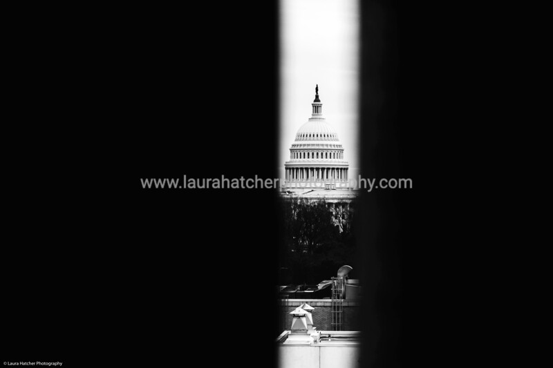 Framing the DC Capitol