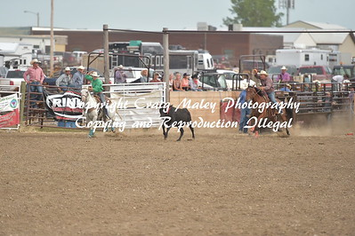 TEAM ROPING PREF 7-9-2016