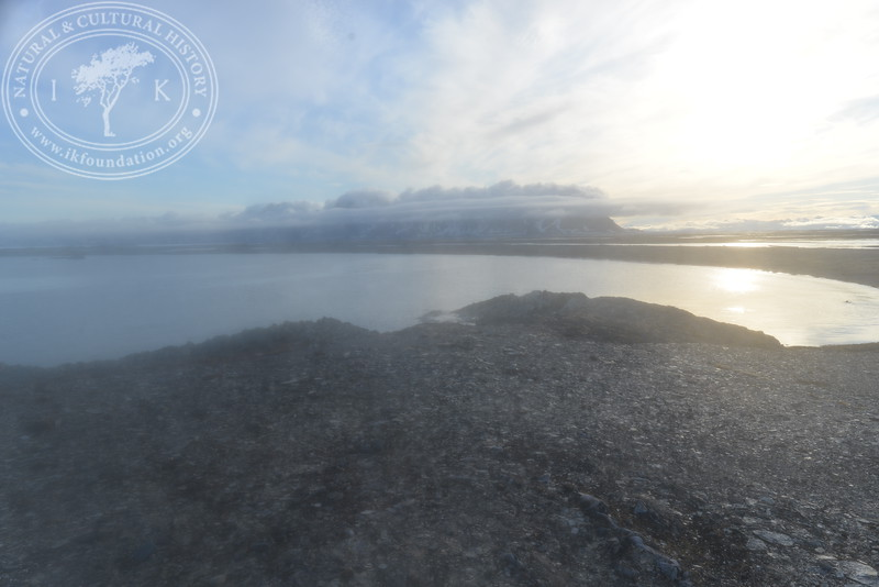 "The autonomous camera system has taken one hourly picture around the clock, from May 9th to July 12th in 2019, the last day when this Field Station camera registered two visiting polar bears, facing the camera in different directions. After this date, the camera continued to shoot until August 29th in 2019. All these pictures are published in a special gallery called ""Pictures 