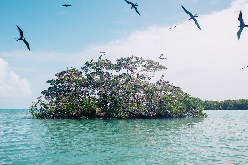 Visit the Sian Ka'an Biosphere Reserve in Mexico