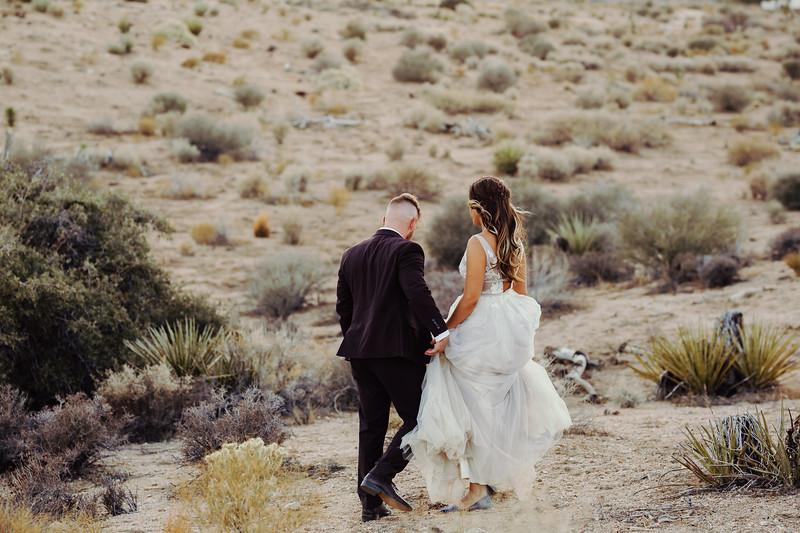 Elise&Michael_Wedding-Jenny_Rolapp_Photography-909.jpg