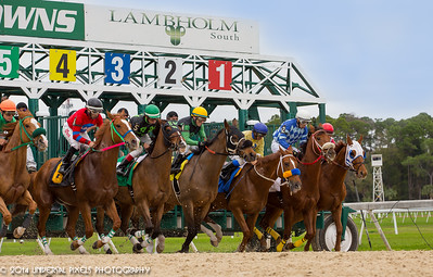 2015-01-14 Tampa Bay Downs