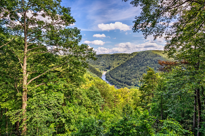 New River Gorge--2.jpg