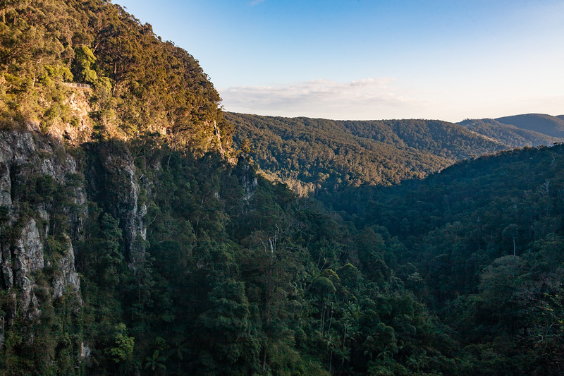 Cliffs and forest - Christines Country Tea Rooms, Springbrook, Queensland, Australia (AU)