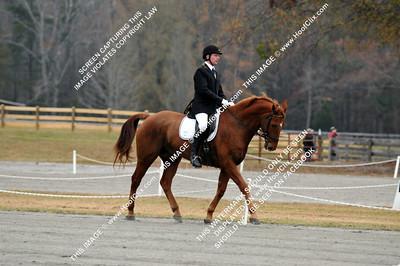 111127 USEA Horse Trial