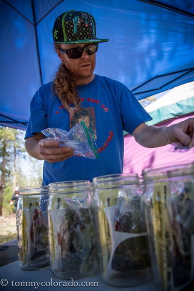 cannabiscup_tomfricke_160917-2216.jpg