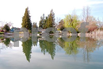 Mokelumne River Reflections