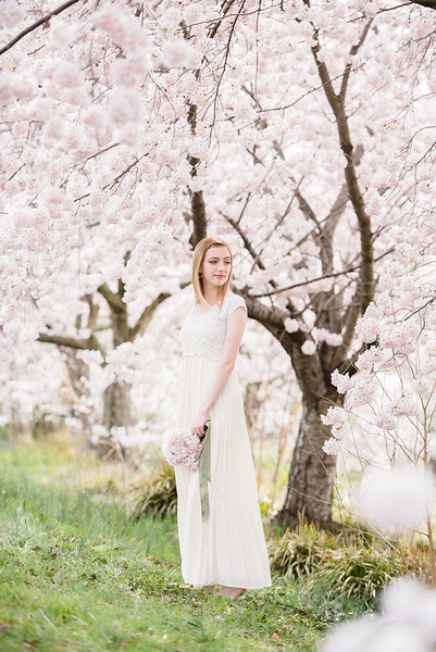 Cherry Blossoms (166 of 182).jpg