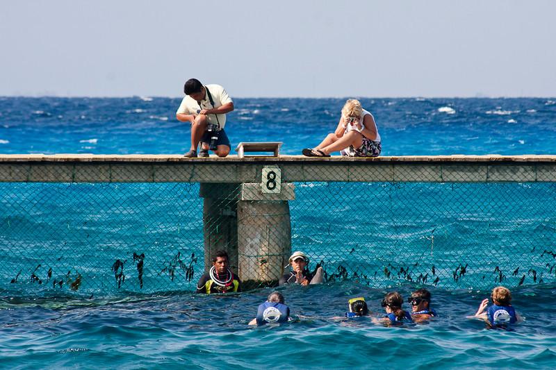 2011_01_22_Carnival-Destiny-Cruise-Cozumel-Key-West__MG_5842-tpb.jpg