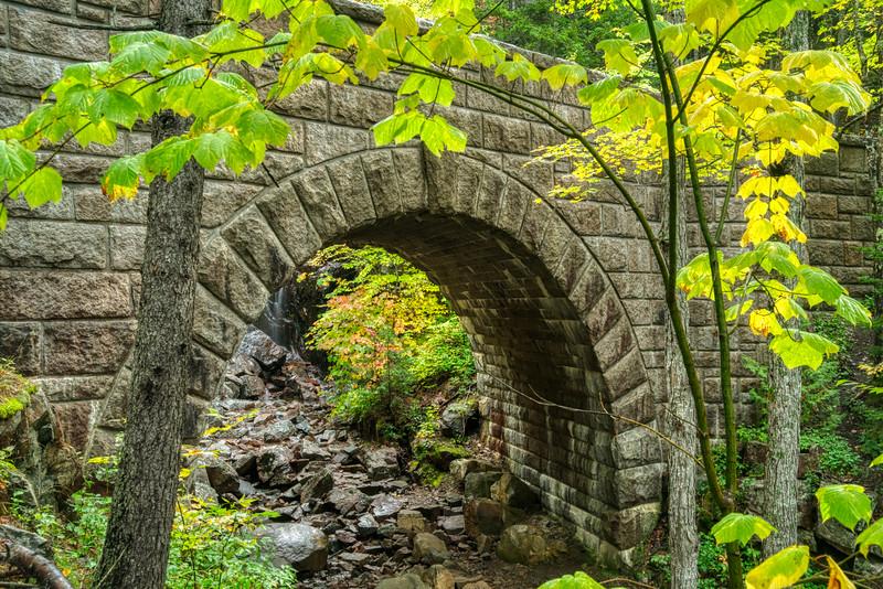 Acadia NP Fall 2019-17.jpg