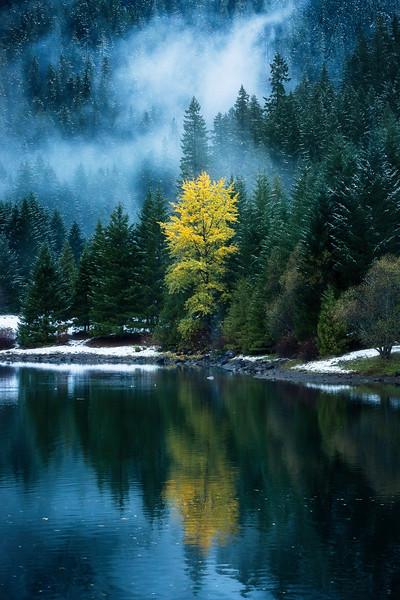 Seasons Changing Hwy 126