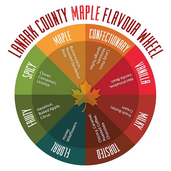 Lanark County Maple Flavour Wheel.jpg