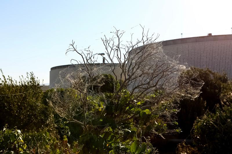 Santa Clara 144.jpg