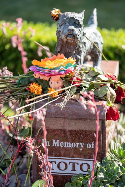 Dia de los muertos 2019-40.jpg