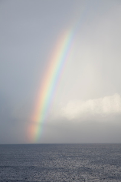 2011-cruise-486.jpg