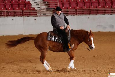 Thursday Novice Horse Set 14 132-138