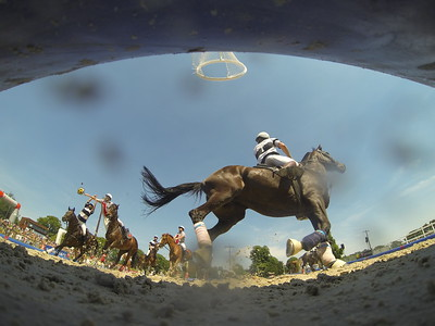 CHT FRANCE HORSE BALL 2014