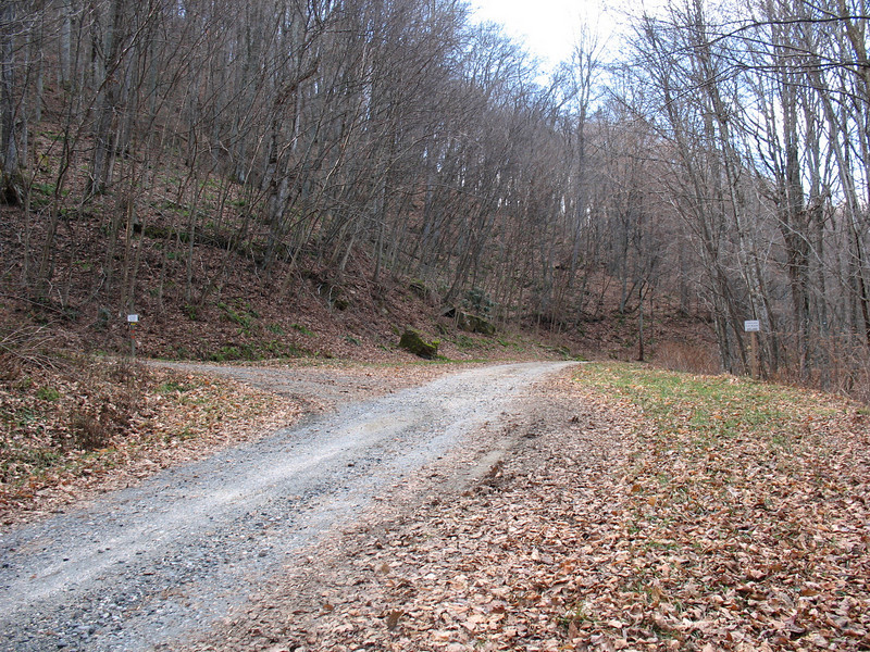 You turn left here off Oak Trail and follow the access road about 0.4 mile to the trailhead parking area.